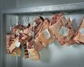 Disricaem maduración bovino